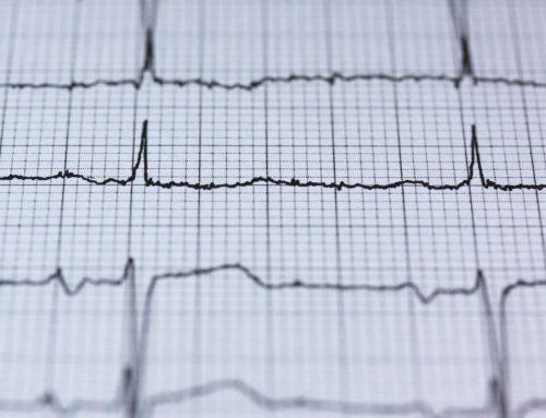 Herzgesundheit – mit der richtigen Ernährung das Herz unterstützen