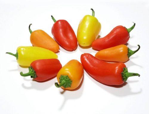 Paprika – ein besonders wertvolles Gemüse