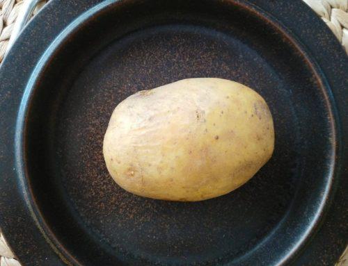 Die Pflege der Kartoffeln nach dem Keimen